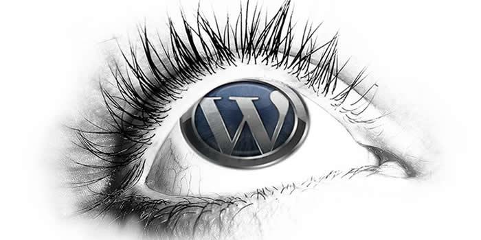 Western MA WordPress Specialists
