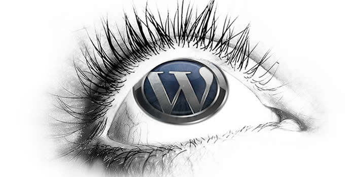 WordPress: A World-Class Content Management System